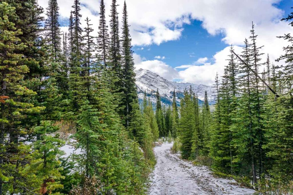 Chester Lake Trail in Kananaskis