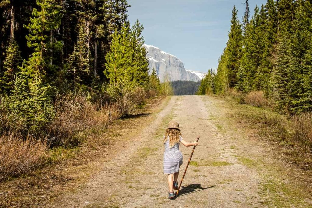 best easy hikes in kananaskis