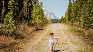 best easy hikes in kananaskis