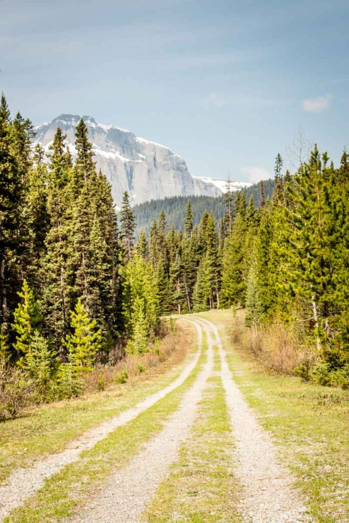 kananaskis trails - Karst Spring