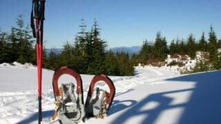 snowshoeing kananaskis