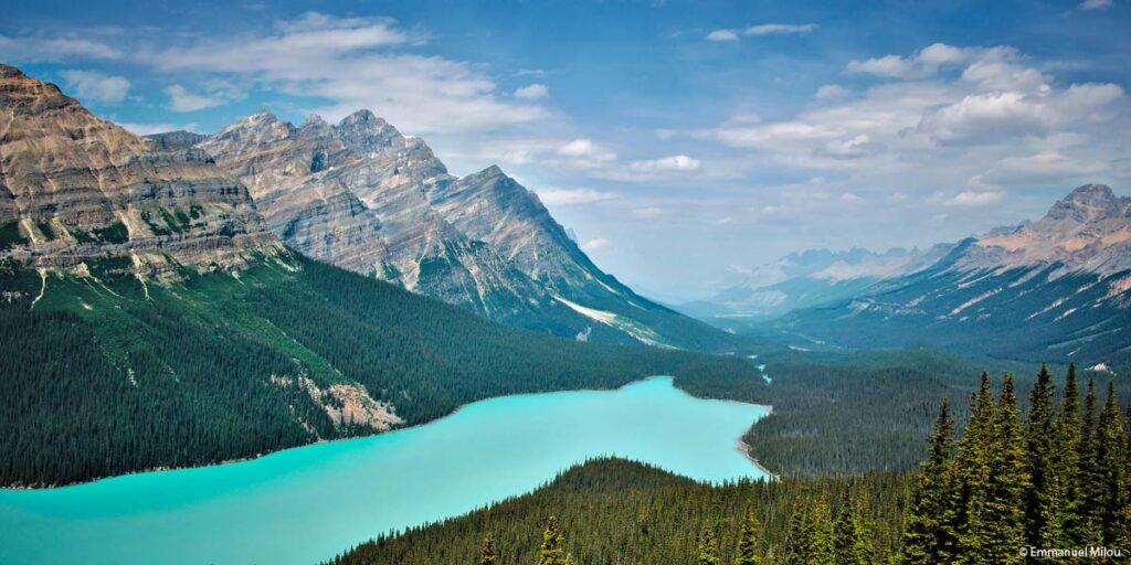 The brilliant turquoise water of Peyto Lake as seen from the easy hike to the viewpoint