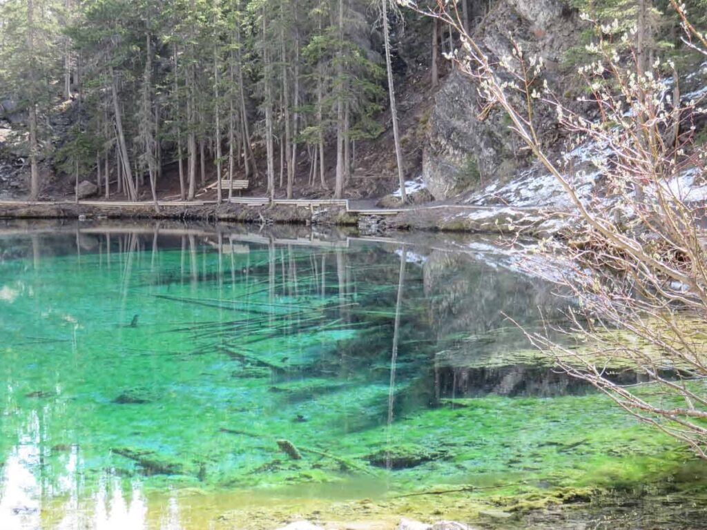 The Grassi Lakes is an easy hike in Kananaskis where the lakes have incredible deep blue-green color