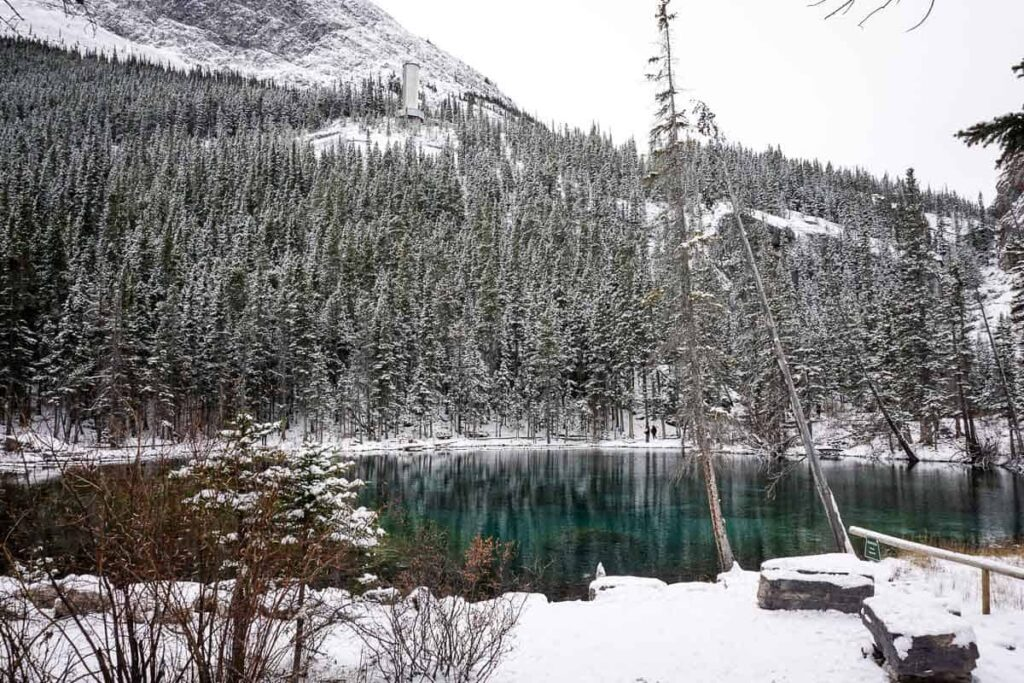 Snow covered trees surround the beautiful Grassi Lakes