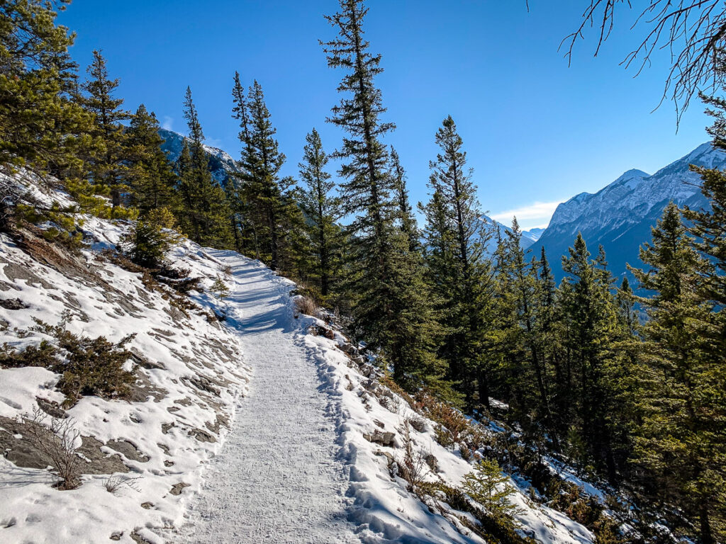 Tunnel Mountain is an enjoyable Banff winter hike