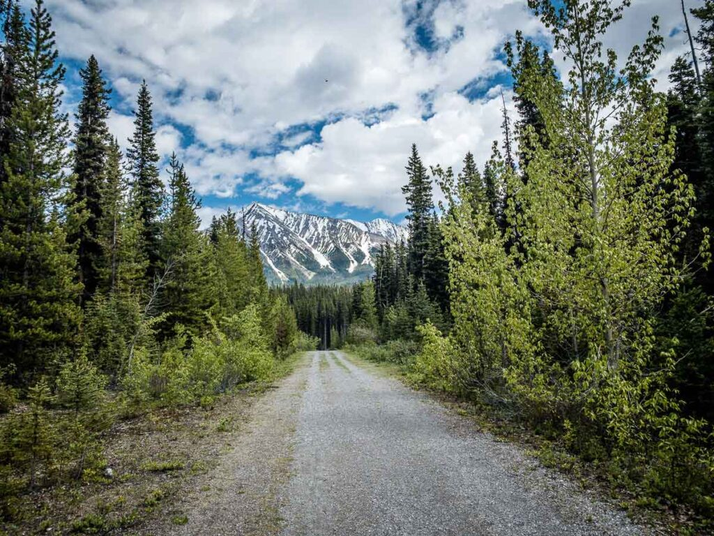 The wide and easy biking trail to Watridge Lake makes for a fun family bike ride in Kananaskis