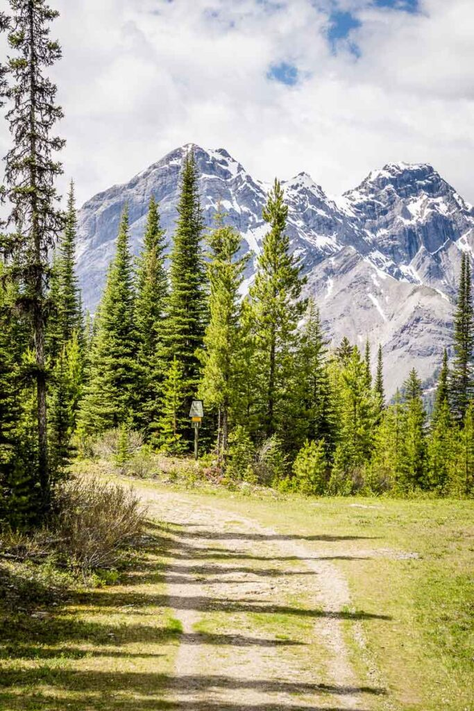 biking Karst Spring is an easy off-road biking trail in Kananaskis for kids