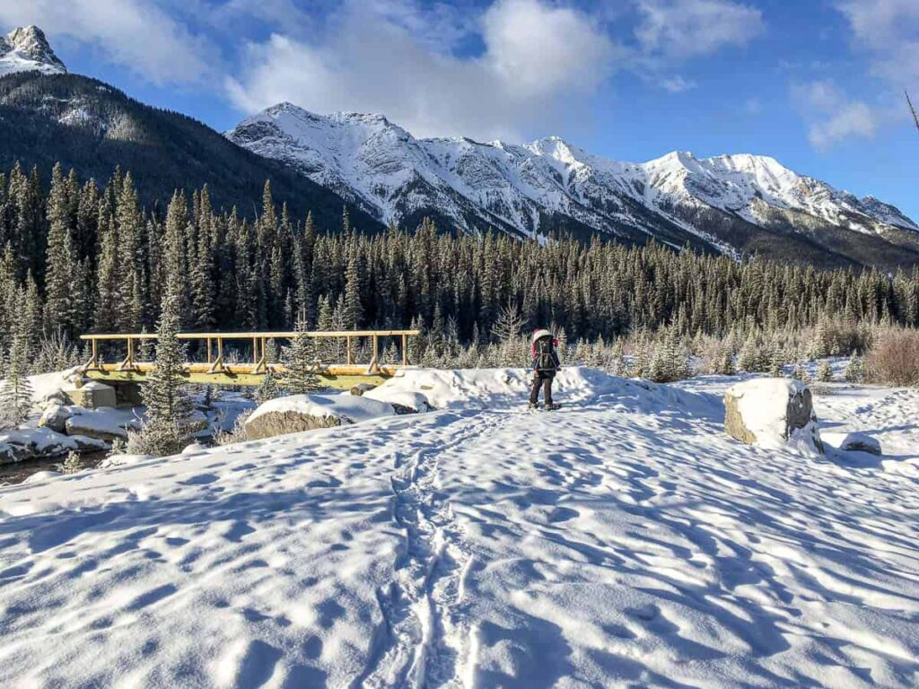 Snowshoeing South Goat Creek is one of our favorite December activities near Canmore