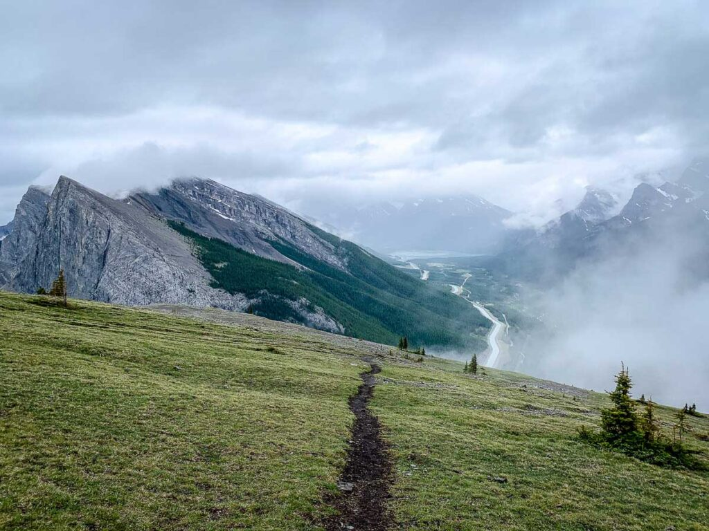 The alpine meadow on the EEOR hike in Kananaskis offers great view of Ha Ling Peak and the Spray Valley Provincial Park