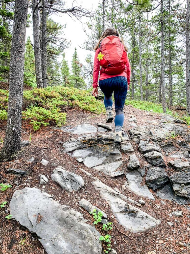 We recommend wearing a good pair of hiking boots while on the East End of Rundel hike near Canmore