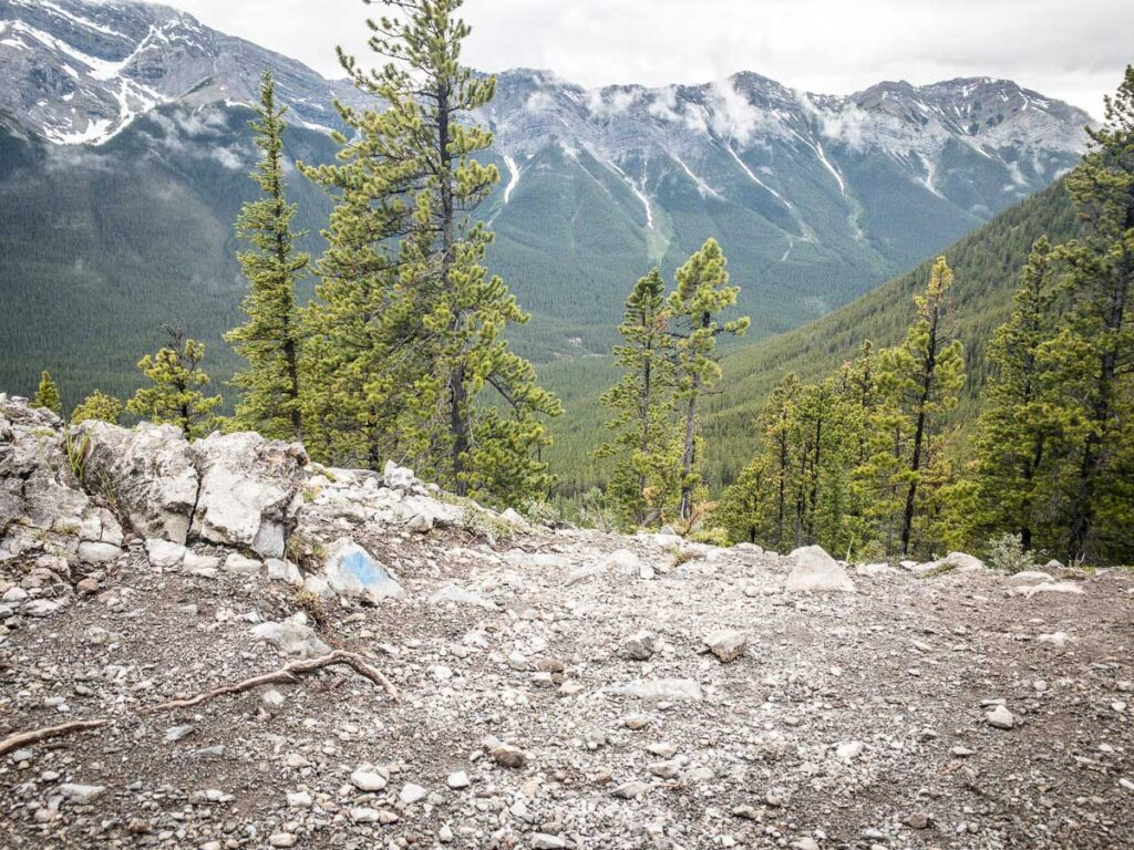 The trail is difficult to follow on the EEOR hike in Kananaskis - we recommend having a hiking app with the East End of Rundle hiking map downloaded on it