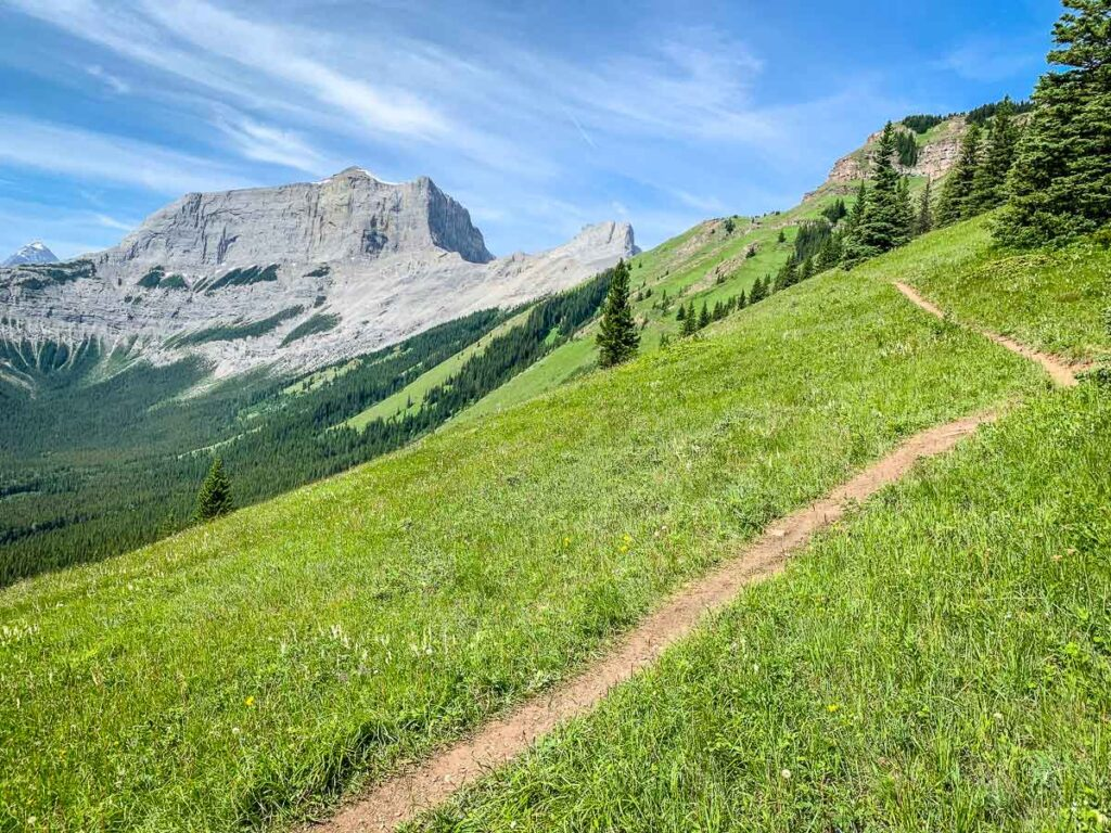 Hiking Wind Ridge trail you'll enjoy views of The Rimwall, Wind Tower, Mount Lougheed and Wind Mountain