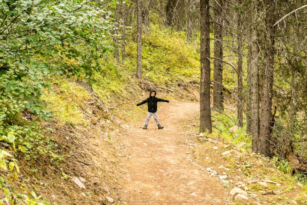 The High Rockies Trail is an easy, kid-friendly hike