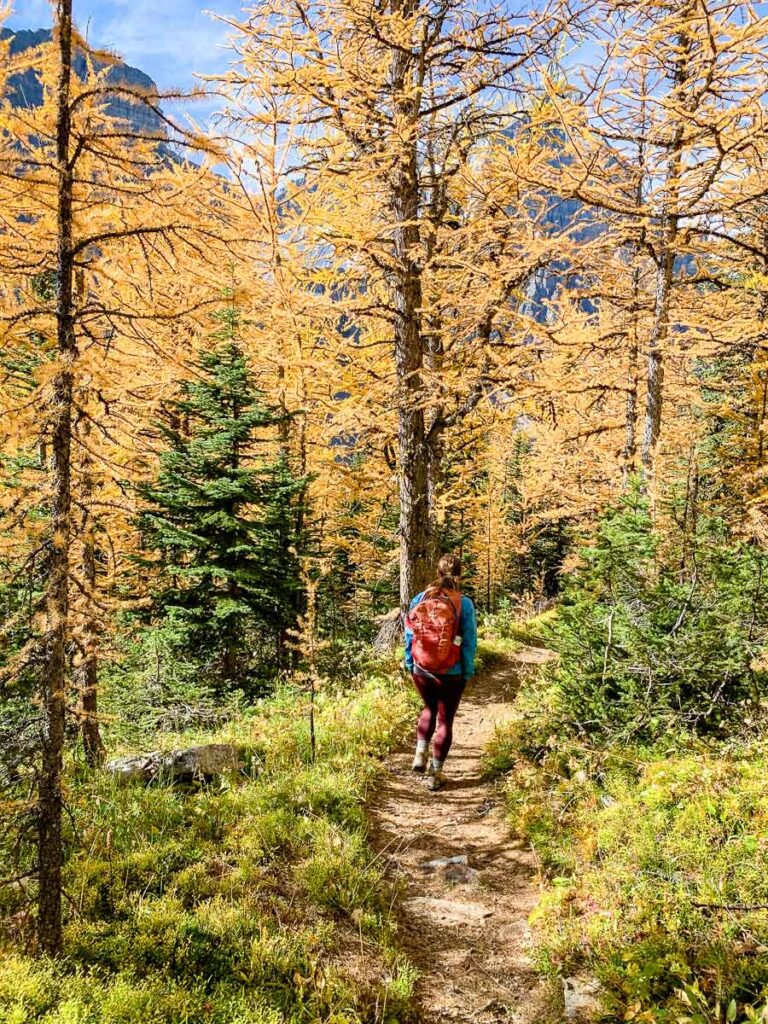 Sheol Valley is a great alternative to Larch Valley Lake Louise hike