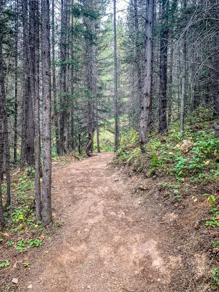 Canada's Great Trail runs through Kananaskis Country