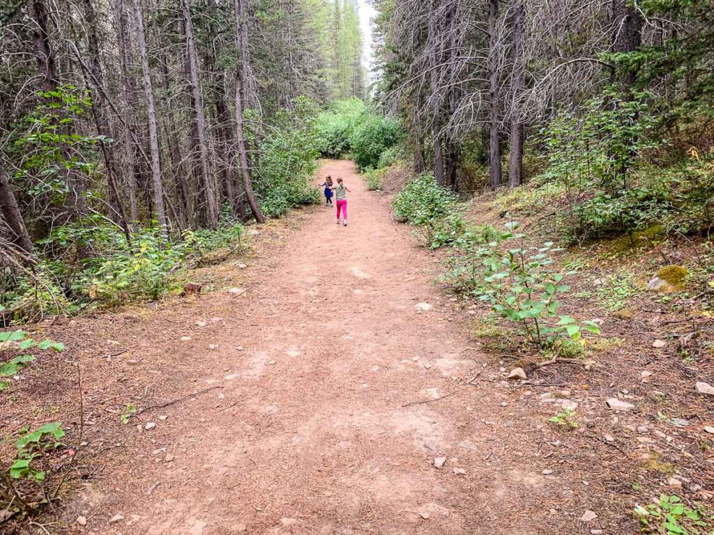 The hike along the High Rockies Trail to the Suspension Bridge is great for families