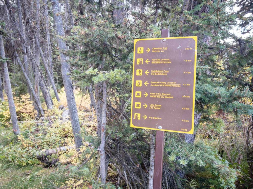 Most trails have great signage, so you likely don't need a lake louise trail map