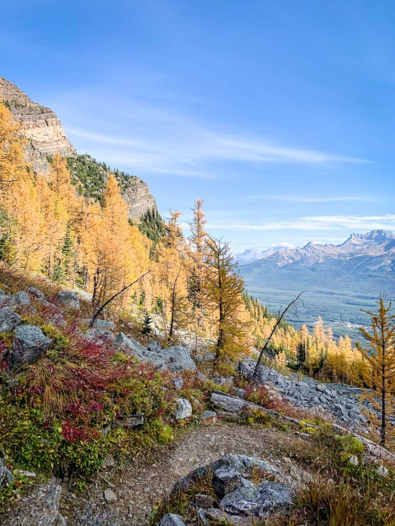 September fall colors in Lake Louise on the Saddle Mountain hike