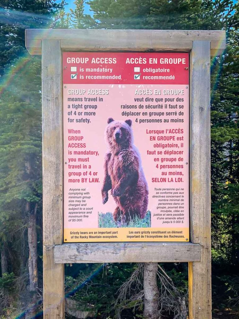 Parks Canada recommends hikers in Sheol Valley travel in groups of 4 or more due to grizzly bears