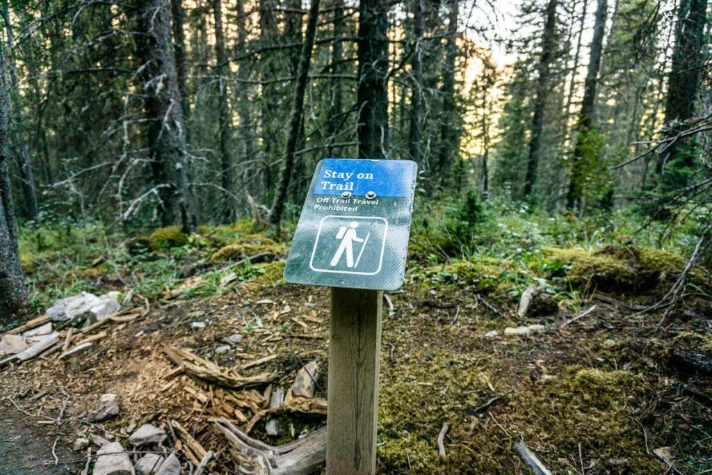 there are many great hikes near banff national park