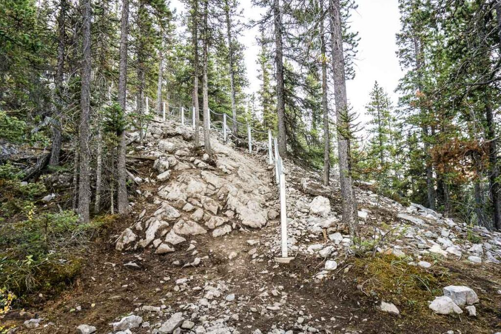 Should I wear hiking boots hiking Miners Peak trail?