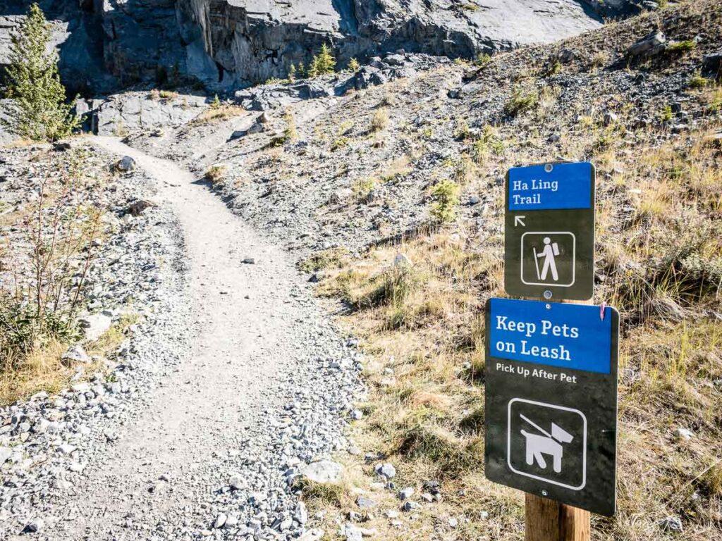 signs at the shared hai ling peak / miners peak trailhead