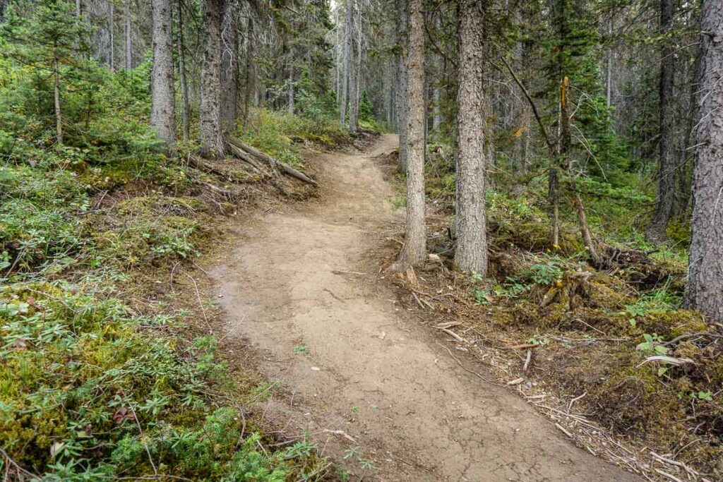 ha ling trail - one of the best canmore hikes