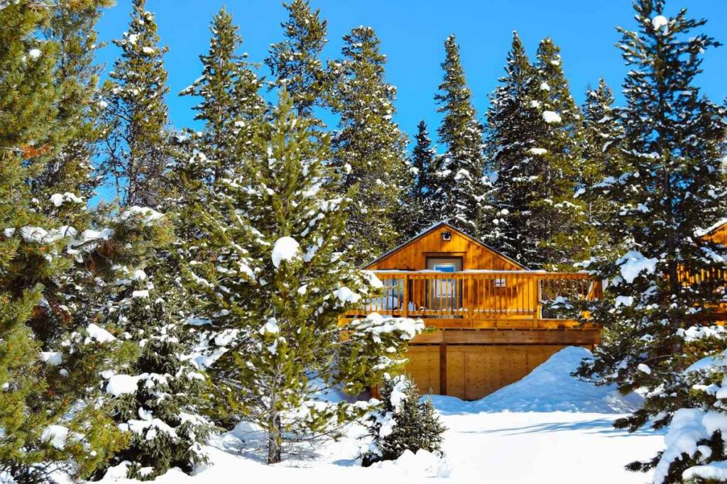 Beat the crowds by staying at a hotel for a larch tree getaway