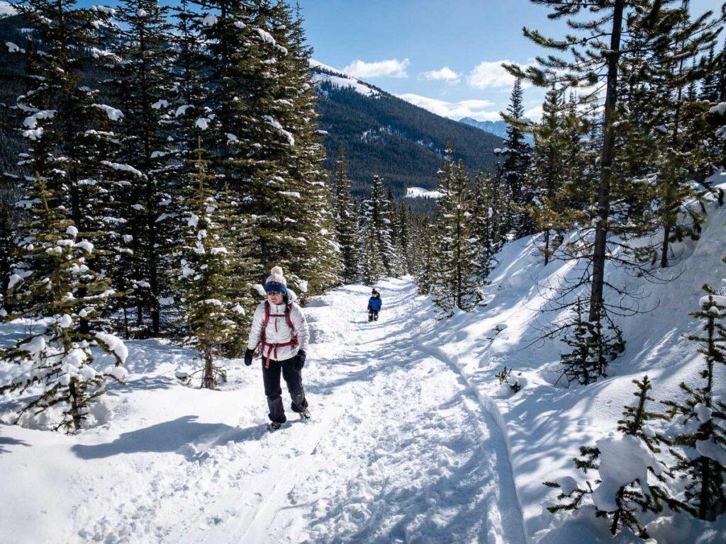 Black Prince Interpretive Trail - winter hiking kananaskis
