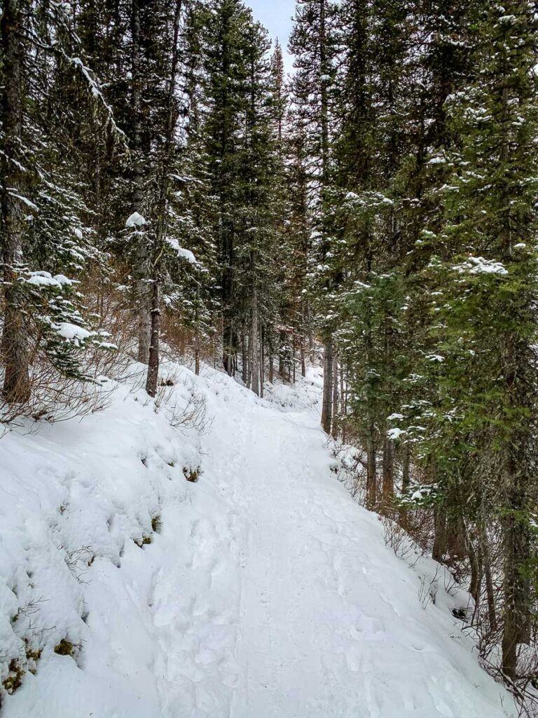 Upper Kananaskis trail to Rawson Lake - winter hiking trails Kananaskis