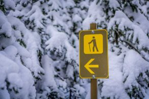 14 Easy Winter Hikes in Banff and Area