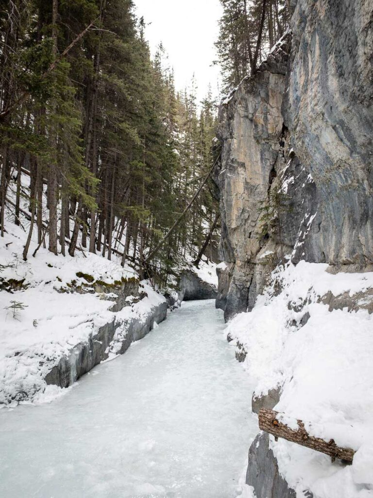 Grotto Canyon icewalk tour - banff things to do in December