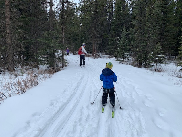 A family enjoys cross county skiing on the Braille trail near Elkwood, Kananaskis Country