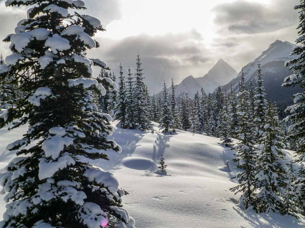 December is one of the best times of year to visit Banff National Park