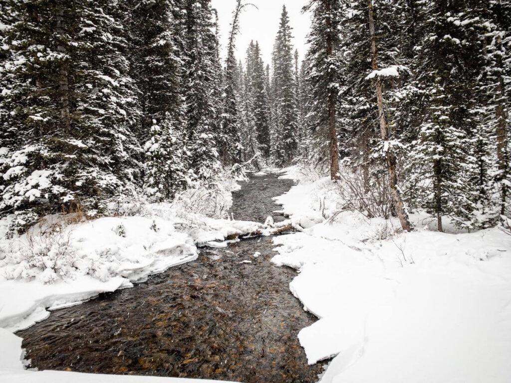 The scenery on Watridge Lake Trail in winter is incredible