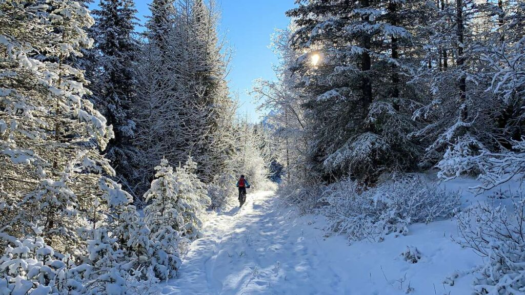 A beautiful winter scene in Kananaskis fat biking the High Rockies Trail between Goat Creek and Goat Pond