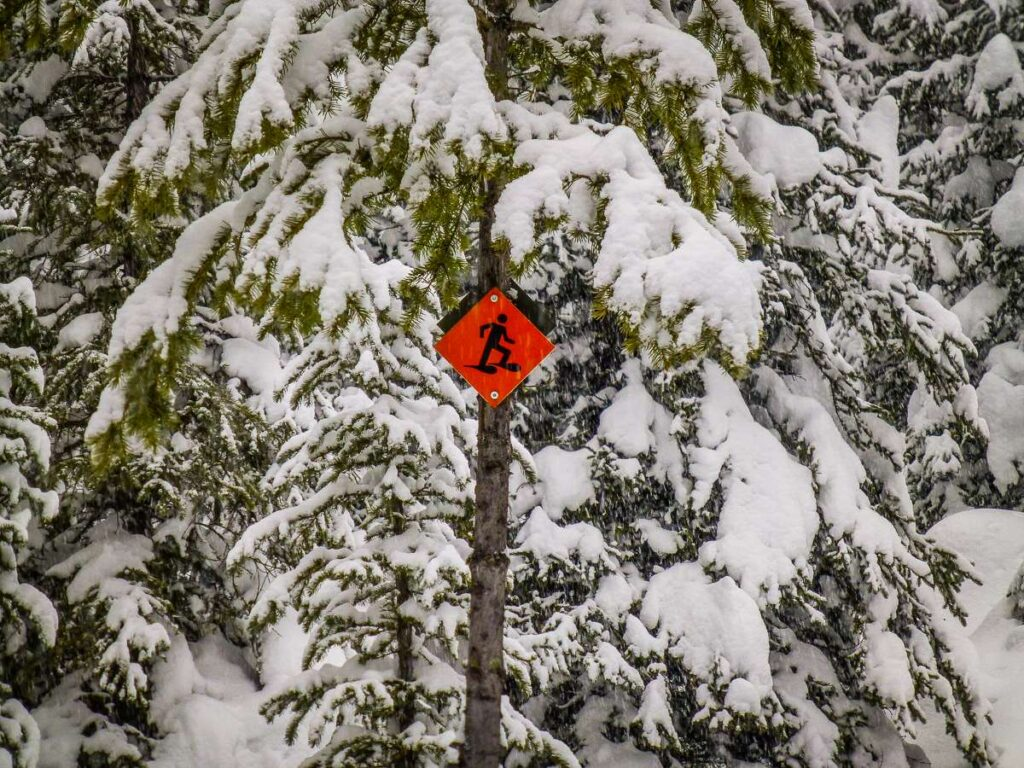 The bright orange diamond snowshoe trail marker is a common sight on all Kananaskis snowshoeing trails