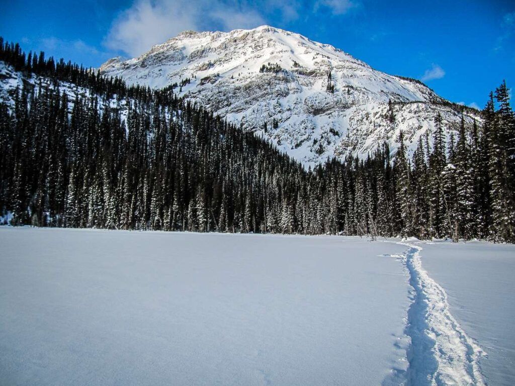 A snowshoe trail in the snow on the Hogarth Lakes trail in Kananaskis Country