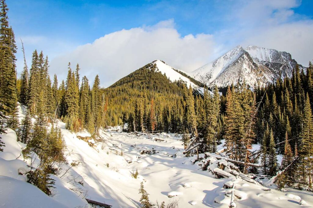 A snow covered mountain stream on the Kananaskis Sawmill Loop snowshoe trail