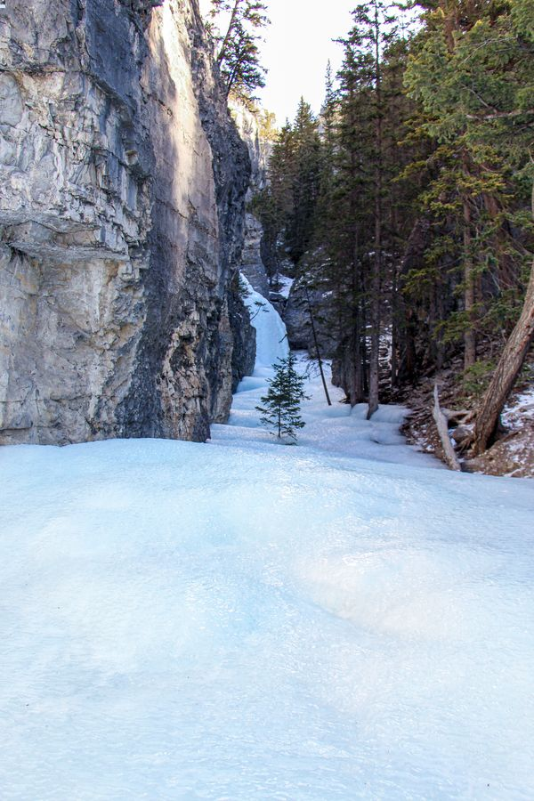 A steep path of ice to the right of the Grotto Creek frozen waterfalls