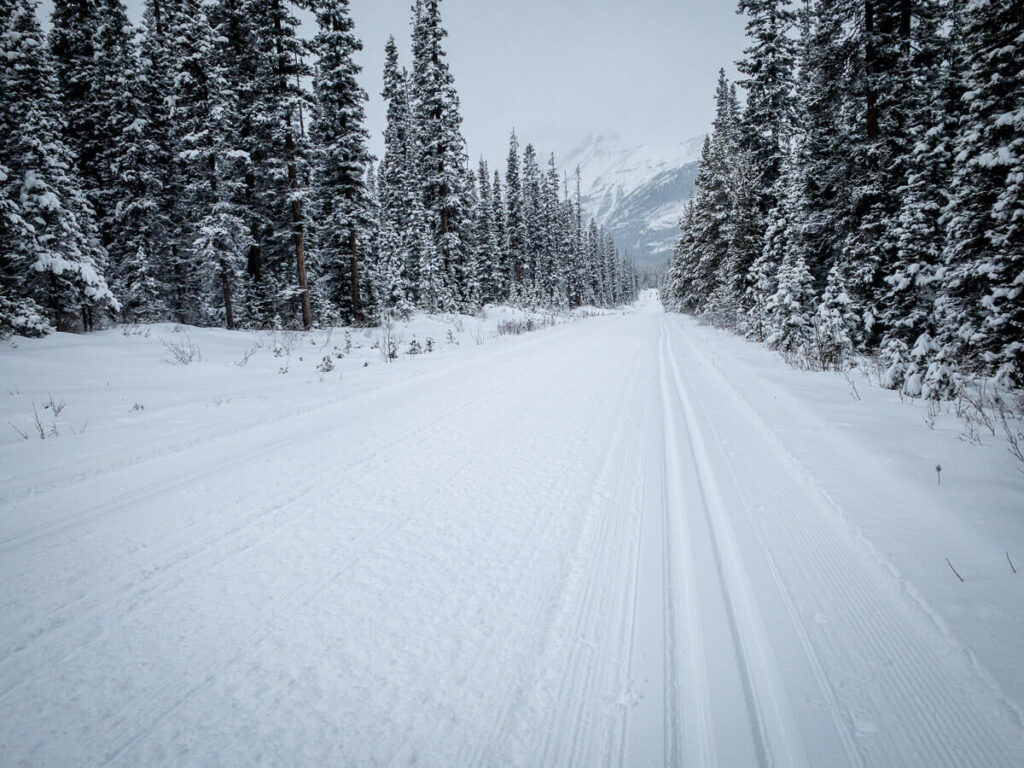cross country skiing lake louise - Great Divide trail