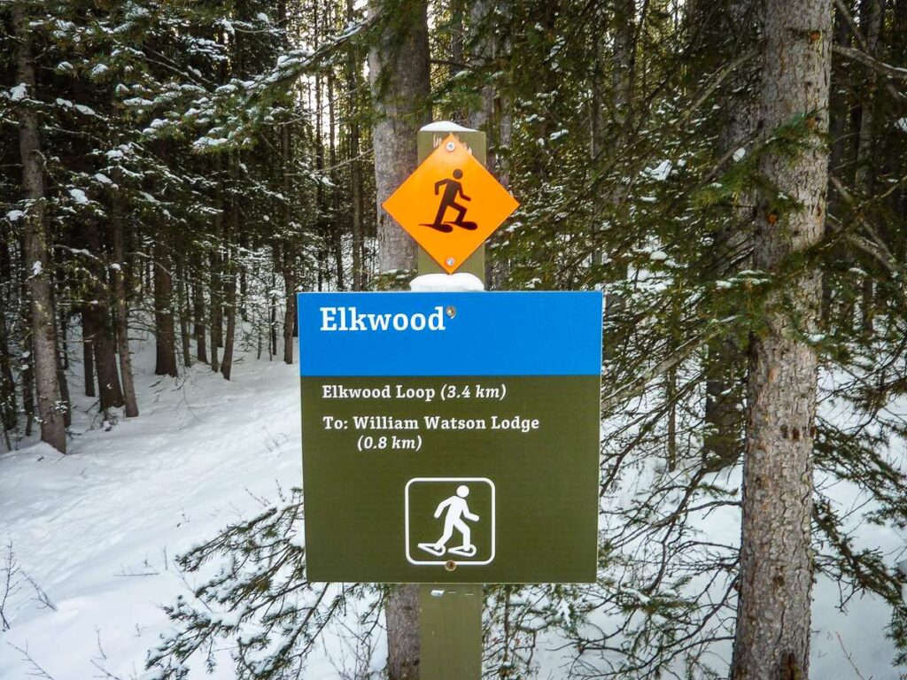 The Kananaskis snowshoe trails are all very well marked with trail signs such as this one for the Elkwood Loop snowshoe trail