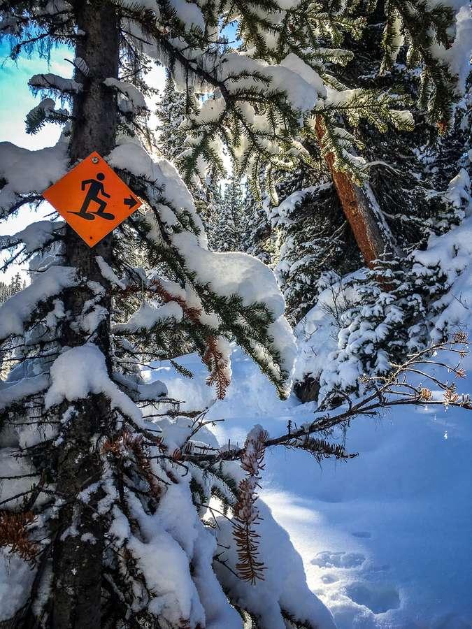 The orange diamond snowshoeing trail marker is a common sight on Kananaskis snowshoeing trails