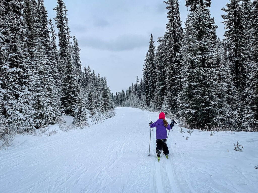 kids cross country skiing on the Great Divide Trail at Lake Louise, Banff