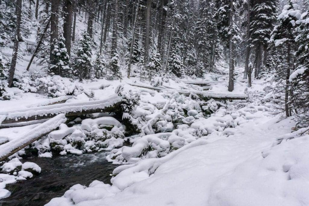 Snowshoeing Karst Springs in winter is incredibly beautiful