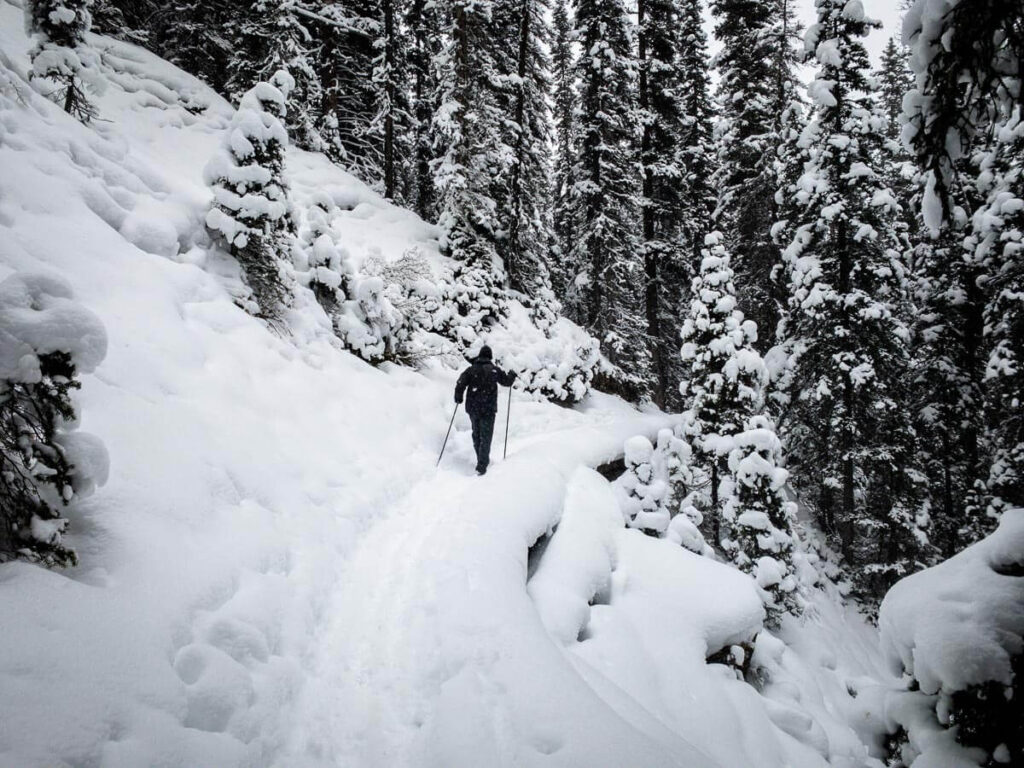 After snowshoeing the Watridge Lake Trail, we highly recommend you continue to do the Karst Spring snowshoe trail