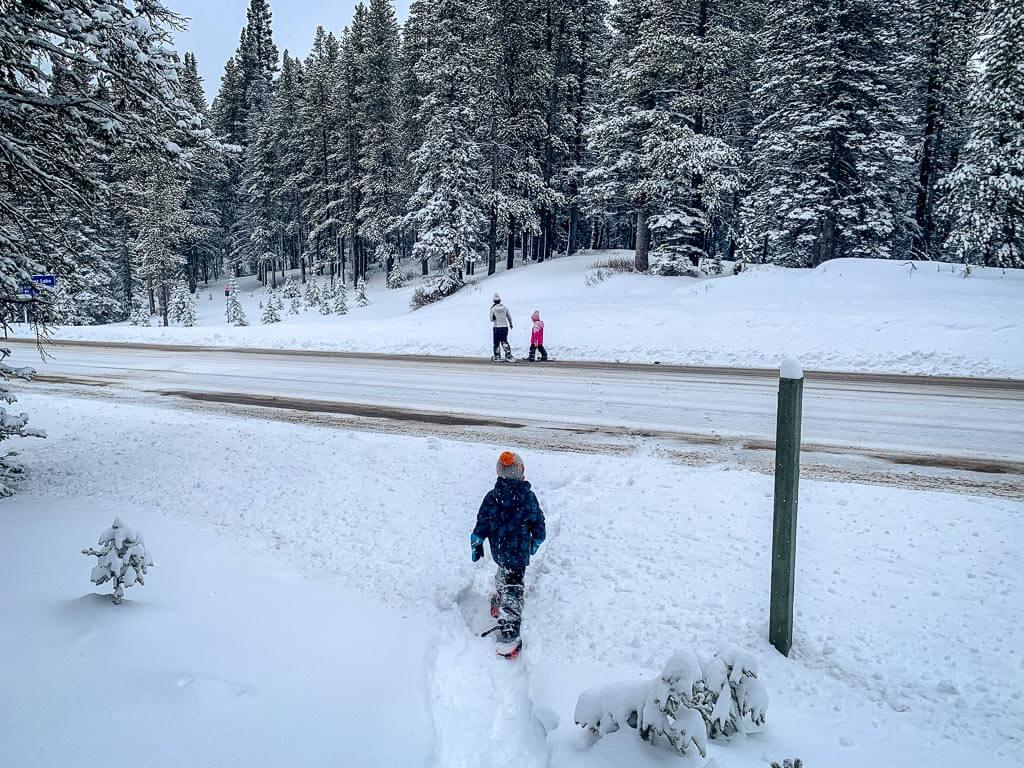 kananaskis snowshoeing on Torpor Loop