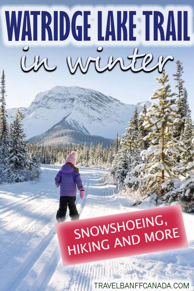 Looking for some of the best winter activities in Kananaskis? Try out the Watridge Lake Trail - from snowshoeing, winter hiking and cross country skiing, the Watridge Lake trail in winter has something for everyone.