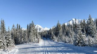 The groomed cross-country ski trails at Watridge Lake Trail. There's room on the side for snowshoeing, winter hiking and fat biking
