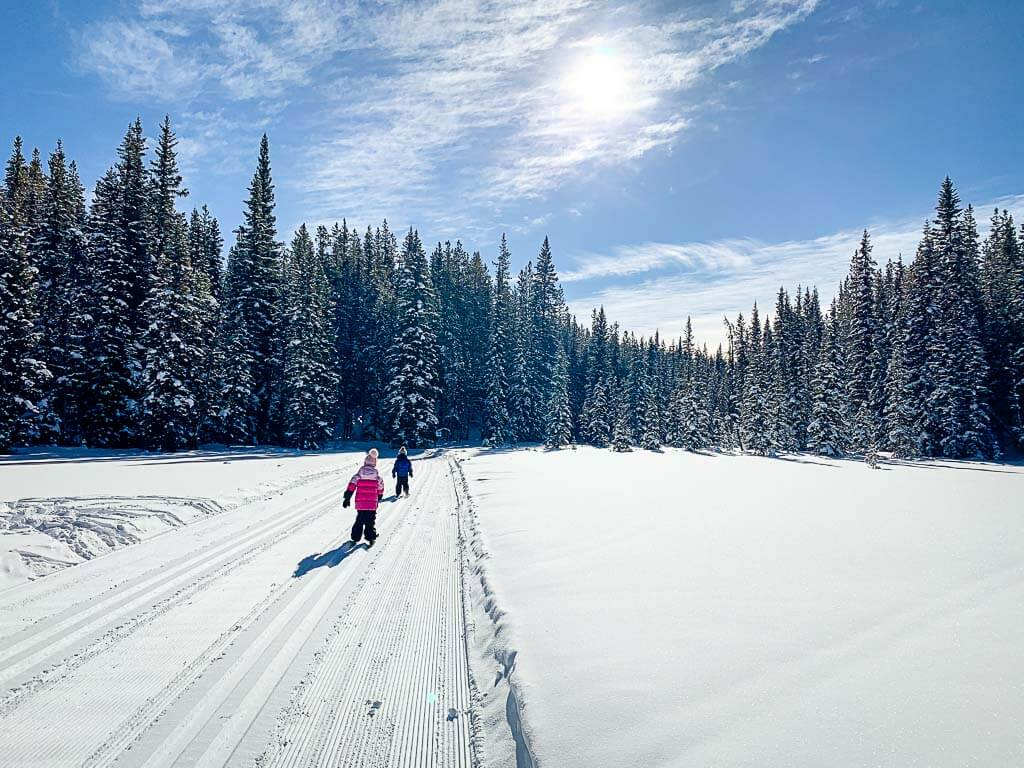 Amos Cross Country Ski Trail in Kananaskis